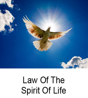 Law Of The Spirit Of Life Henry Gruver